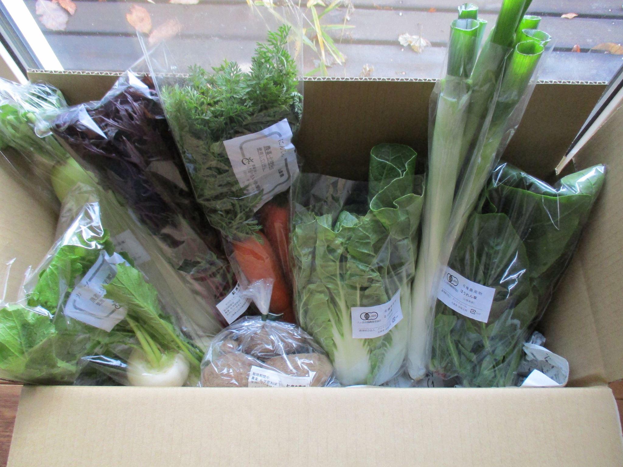ふるさと納税『お野菜ボックス』の発送を行いました