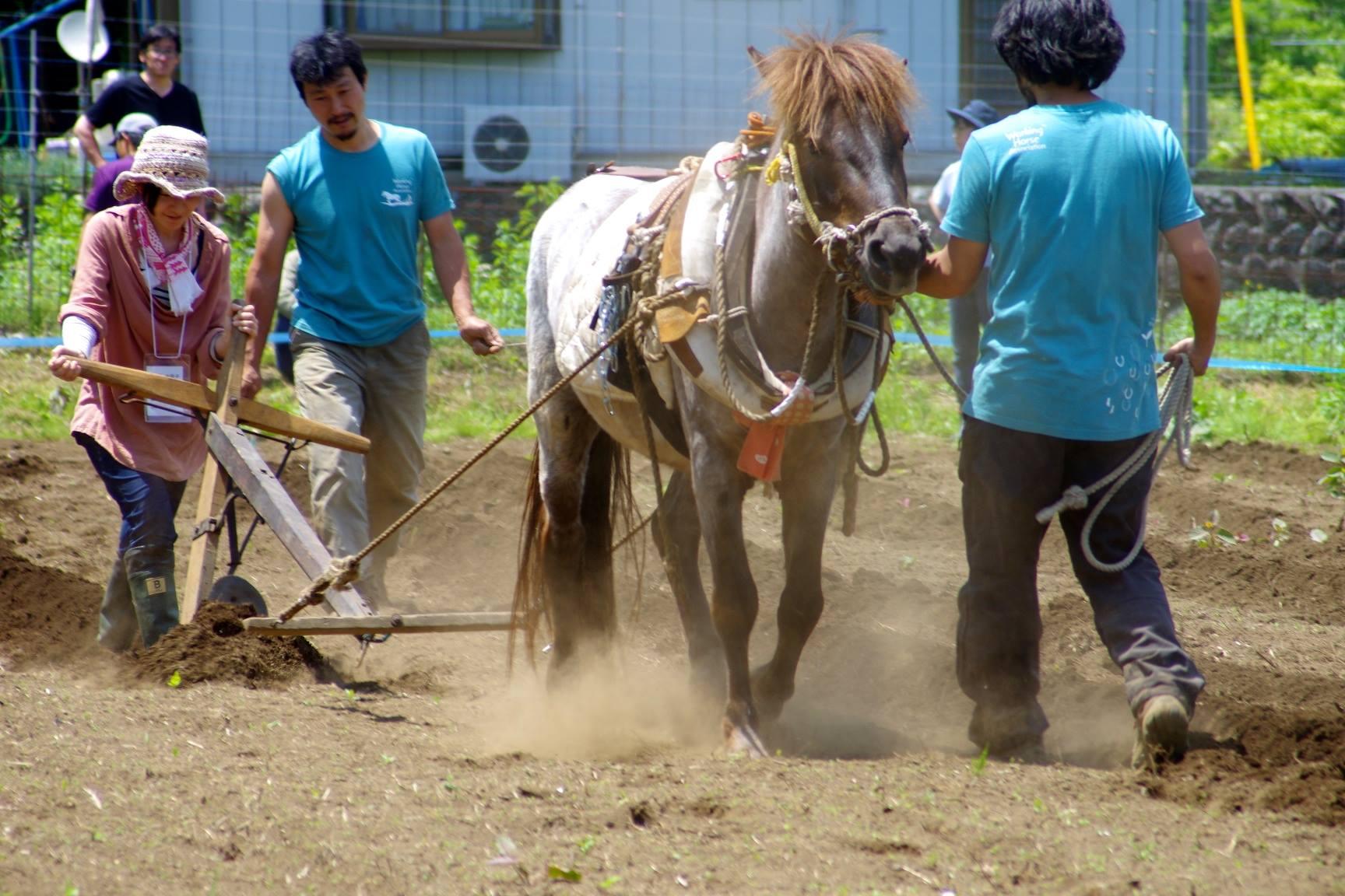【全国馬耕キャラバン】八ヶ岳にコータローがやってくる!!