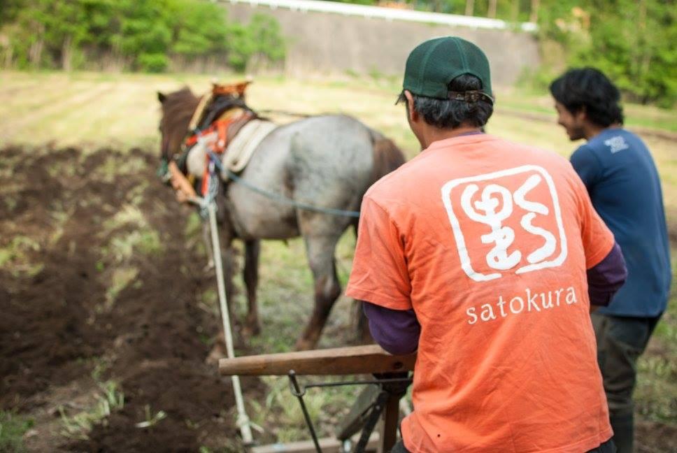 都留環境フォーラムさんとの馬耕イベントを開催しました