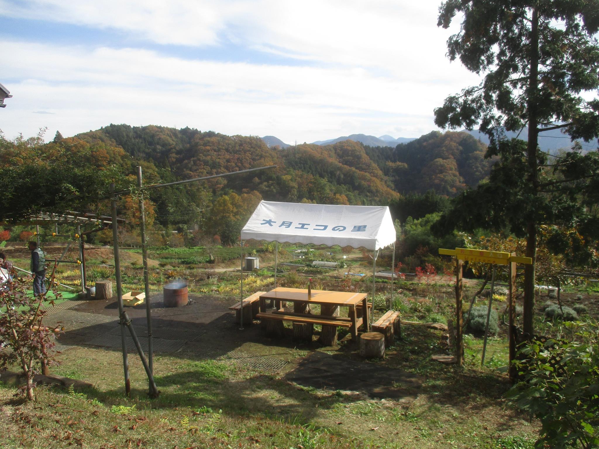 やまなしふるさと農園づくりの取り組みに参加しています