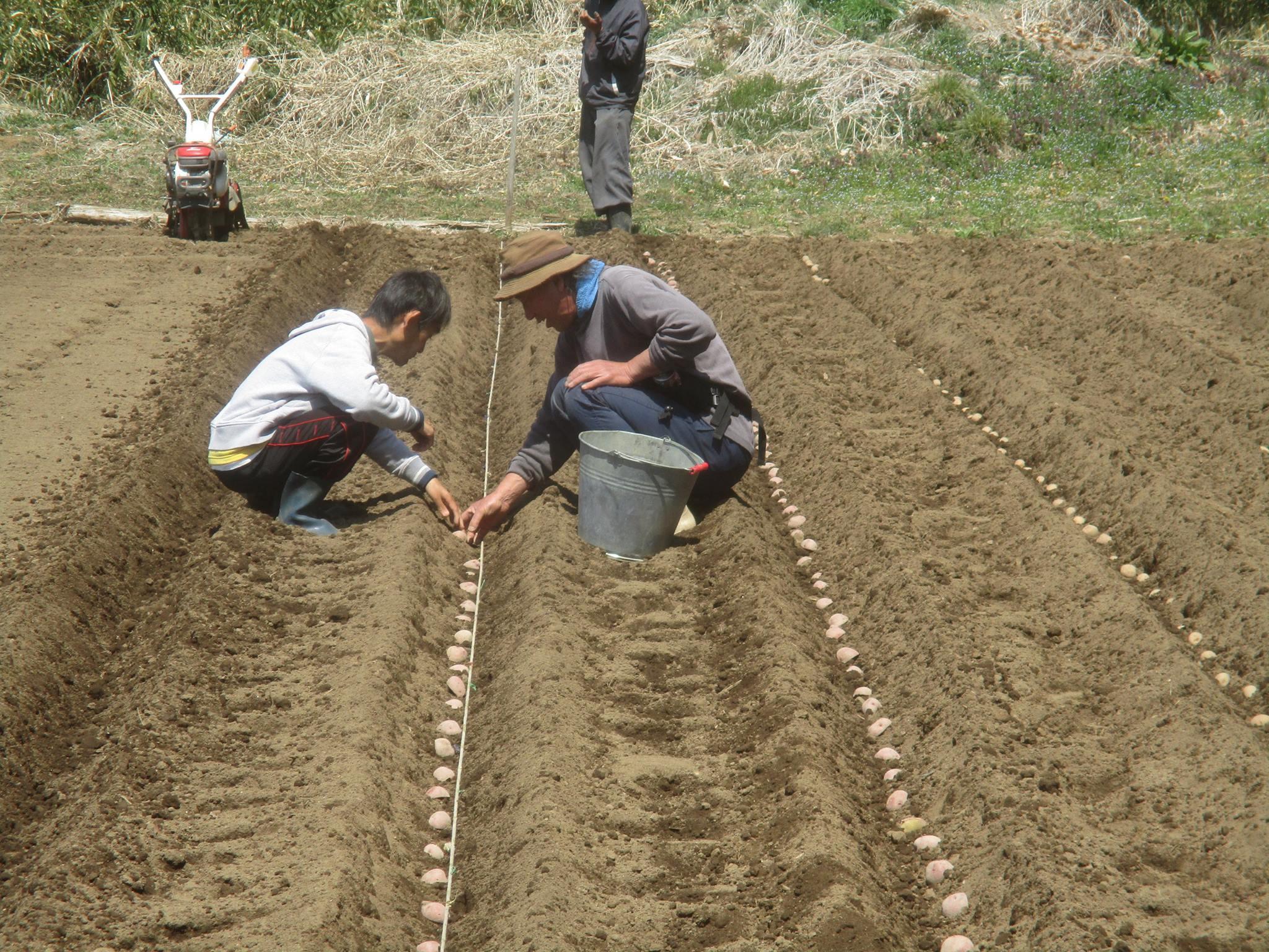 農と福祉の連携  ~はるのひ農場