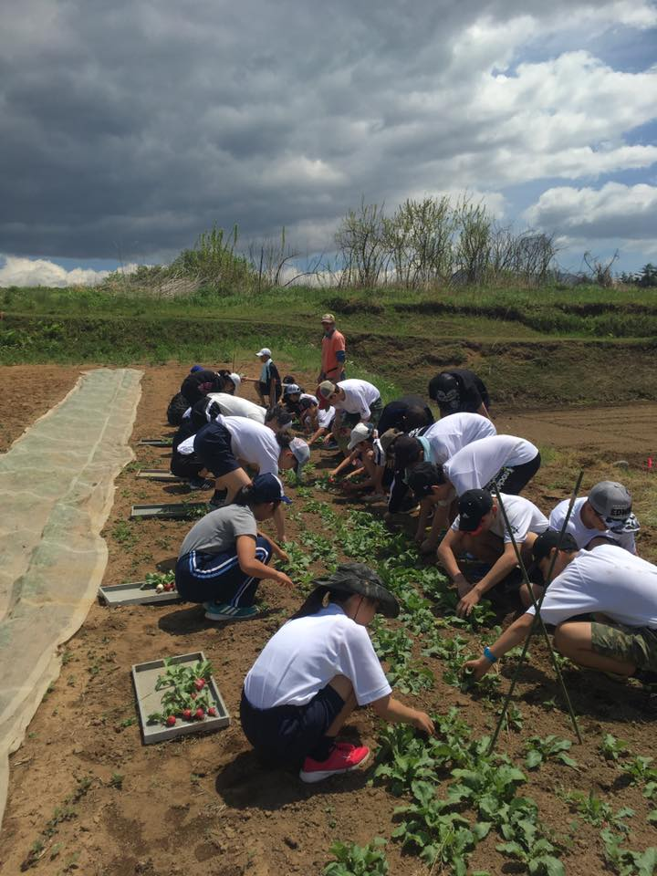東京の中学生が田植え体験に来てくれました!
